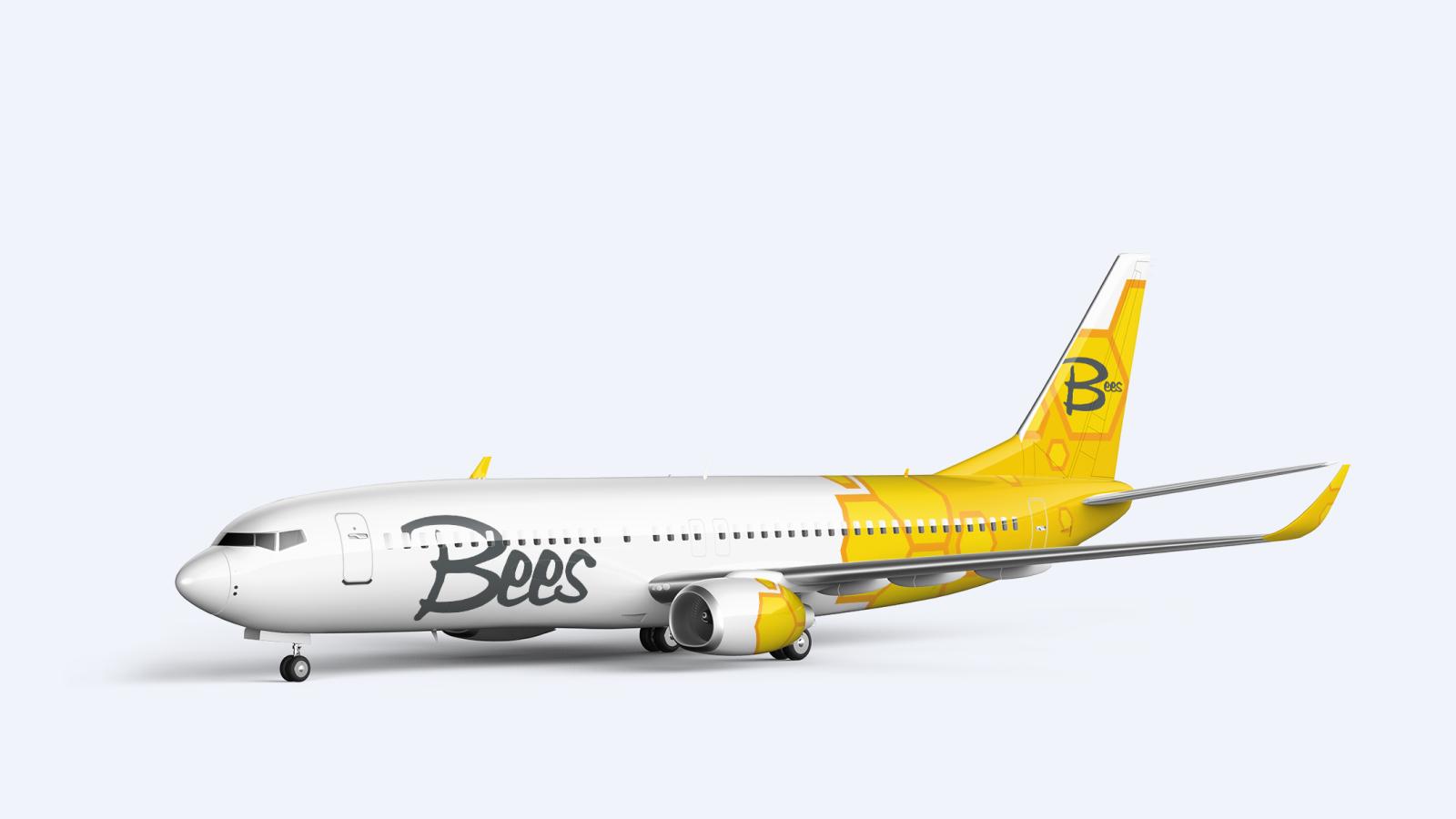 2020 рік знаменується появою нового українського авіаперевізника Bees Airline